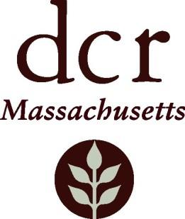 dcr-logo (1)
