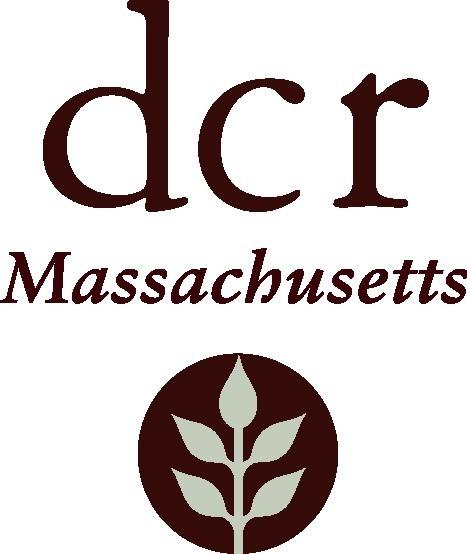 DCR Logo 1