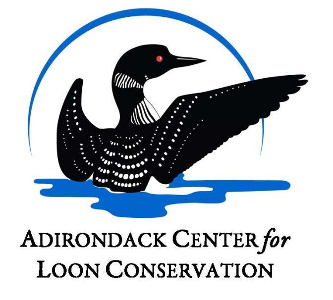 Adirondack Logo +BlkName-stacked smcaps 4-18